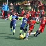 مهرجان بين فرق البراعم و أكاديمية Alex لكرة القدم